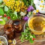 kruiden, planten, natuur